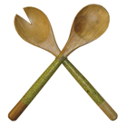 Lime Mango Wood Salad Server Set