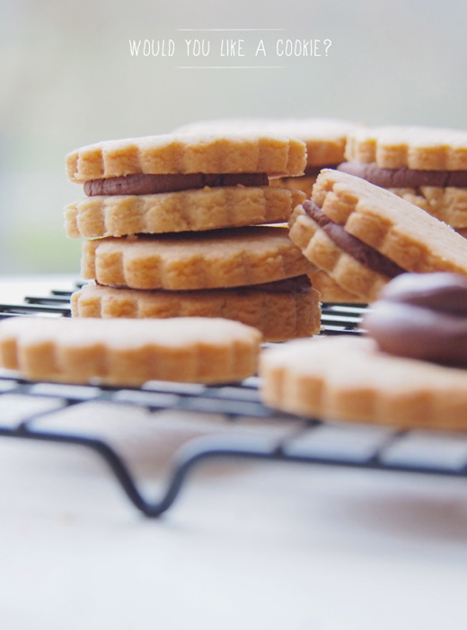 peanut-butter-and-chocolate-cookie-sandwich